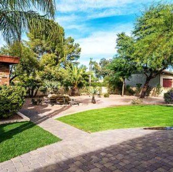 backyard green section